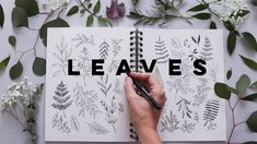 How to Draw Leaves and Botanicals   Relaxing, Journaling, Beginner Watercolor Pencil Art, Abstract Watercolor, Doodle For Beginners, Draw Leaves, Botanical Line Drawing, Botanical Art, Notebook Doodles, Doodle Lettering, Lettering Ideas
