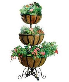 Marvellous Pinterest  The Worlds Catalog Of Ideas With Heavenly Buy Three Tier Flower Fountain At Argoscouk Visit Argoscouk To Shop  Online For Planters Limited Stock Home And Garden Garden Decoration And   With Captivating Cheap Garden Heaters Also Tonys Garden Center In Addition Cheapest Rattan Garden Furniture And Kate Spade Covent Garden As Well As Garden World Braeside Additionally In The Night Garden Episodes Full From Pinterestcom With   Heavenly Pinterest  The Worlds Catalog Of Ideas With Captivating Buy Three Tier Flower Fountain At Argoscouk Visit Argoscouk To Shop  Online For Planters Limited Stock Home And Garden Garden Decoration And   And Marvellous Cheap Garden Heaters Also Tonys Garden Center In Addition Cheapest Rattan Garden Furniture From Pinterestcom