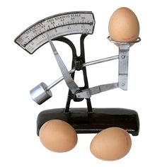 hg_02048_a_egg-scale.jpg (1000×1000)