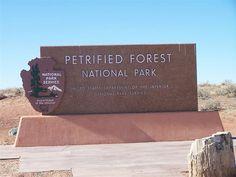 Petrified Forest National Park - AZ