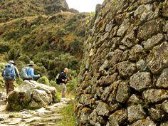 www.terraexplorerperu.com