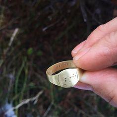 Men's Capricorn constellation signet ring in by LucksmithMetals  https://www.etsy.com/listing/259091439/mens-capricorn-constellation-signet-ring?ref=listing-shop-header-3