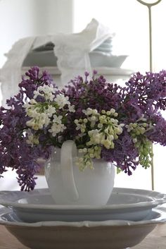 Lilac and Whites, great color combination, white pitcher (The Little Corner) Purple Home, Purple Lilac, Shades Of Purple, Deep Purple, Cut Flowers, Beautiful Flowers, White Flowers, Lavender Cottage, Rosa Pink