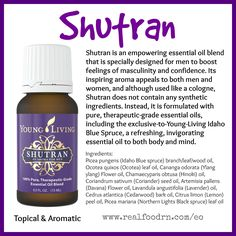 Shutran Essential Oil About: An empowering essential oil blend specially formulated for men to boost feelings of masculinity and confidence, Shutran is Essential Oil For Men, Essential Oils For Massage, Oils For Men, Yl Essential Oils, Essential Oil Perfume, Essential Oil Diffuser Blends, Young Living Essential Oils, Yl Oils, Essential Oil Aphrodisiac