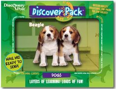Too cute! Each Discover Pack includes a magnet with stand, breed facts and trivia, an 8 page activity book, a dog treat recipe card and more all in a pack you can mail like an oversized postcard! Many cat & dog breeds available, fun to collect.