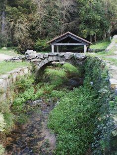 Garden Bridge, Destiny, Outdoor Structures, Cabin, World, House Styles, Places, Travel, Paisajes