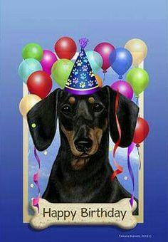 Funny Happy Birthday Images, Happy Birthday Quotes, Happy Birthday Greetings, Dachshund Art, Funny Dachshund, Daschund, Happy Birthday Dachshund, Birthday Clips, Happy B Day