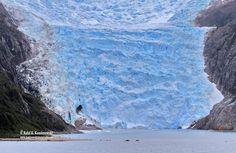 Glacier pia.  Parque Nacional Alberto Agustini. Chile. XII Región de Magallanes y Antártica Chilena. Antartica Chilena, Water, Outdoor, National Parks, Country, Gripe Water, Outdoors, The Great Outdoors, Aqua