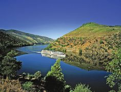We reached out to some top river cruise sellers to get their sales and marketing insight into the pros of selling two river systems that often appeal to more experienced travelers — Portugal's Douro and France's Rhone/Saone rivers. Douro Portugal, Two Rivers, Port Wine, Golf Courses, Cruise, France, Explore, City, Water