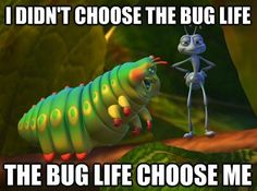 I didn't choose the thug life meme // bug's life disney memes