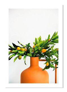 guest room decor print with kumquat plant
