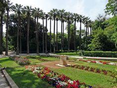 Η δημιουργία του Βασιλικού κήπου, οφείλεται στη νεαρή σύζυγο του Όθωνα, Αμαλία. Κατά τη διάρκεια της εικοσιπεντάχρονης παραμονής της στην Αθήνα (1837-1862) η δημιουργία του Βασιλικού κήπου έμελλε ν...