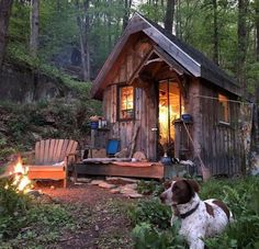 Cabin Fever Tiny Cabins, Tiny House Cabin, Cabins And Cottages, Cabin Homes, Log Cabins, Tiny Homes, Into The Woods, Cabin In The Woods, Zelt Camping