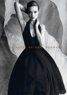 Royal Botanic Runway catalogue shoot. Photographer : Justin Ridler, Stylist : Emily Ward, Hair & Makeup : Belinda Zollo, Location : The Establishment Studios