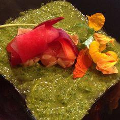 #tataki #salmon #japanese #gourmet by ferkasten