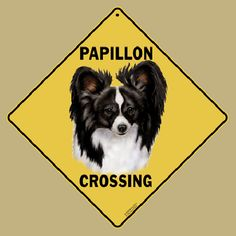Papillon Dog Crossing Road Sign Quality Made Sign, Made From Aluminium. $19.95