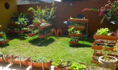 canteiro suspenso | Mini Hortas: Um modelo de horta em casa