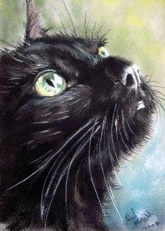 Pastel Painting by Paul Knight Art Pastel, Pastel Paintings, Cat Paintings, Cat Drawing, Painting & Drawing, Black Cat Painting, Instalation Art, Pics Art, Figure Painting