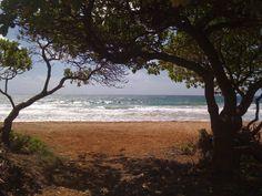 Beach @ Kauai, HI