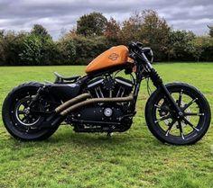 Harley Davidson Sportster 883, Harley Bobber, Harley Bikes, Harley Davidson Motorcycles, Bobber Bikes, Bobber Motorcycle, Motorcycle Clubs, Hd 883 Iron, Bobber Style