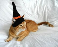 Crochet Witches Hat for CatWizard Cat Hat by MissCrocreations