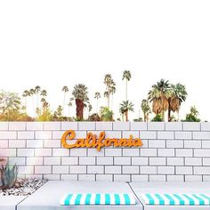 🌟Tante S!fr@ loves this📌🌟 :: Good morning Palm Springs! These homes are absolutely KILLING it especially the house by theuncommonplace Santa Monica, City Aesthetic, Aesthetic Yellow, Modernism Week, California Dreamin', California Republic, City Of Angels, Palm Springs, Cute Wallpapers