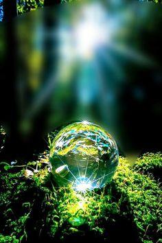 Green lightblue effect sunshine wood