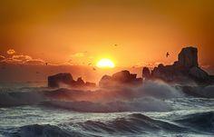 EAST SEA