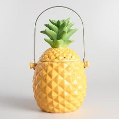 Crafted of ceramic with an embossed design and a brightly painted finish, our airtight pineapple composter looks great anywhere in the kitchen. It includes a replaceable charcoal filter that contains odors naturally and a swing handle for easy transport.