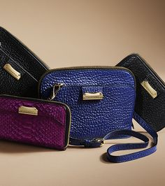 A selection of new Autumn/Winter 2013 wallets and crossbody bags from Burberry