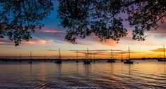 And we'll all float on okay - Sunset Silhouetted Sailboats in Sarasota FL