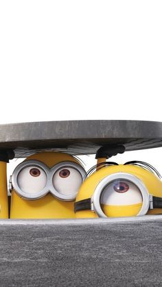 Ideas For Wallpaper Iphone Disney Minions We Love Minions, Cute Minions, Minions Despicable Me, My Minion, Minions Cartoon, Funny Minion, Funny Jokes, Minion Wallpaper Iphone, Wallpaper Iphone Disney