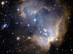 star cluster - Google Search