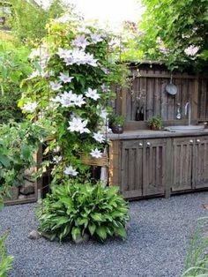 Clematis with shady funkia at the feet. Garden Trellis, Garden Plants, Outdoor Plants, Outdoor Gardens, Outdoor Spaces, Amazing Gardens, Beautiful Gardens, Dream Garden, Home And Garden