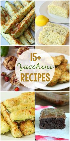 15+ Zucchini Recipes