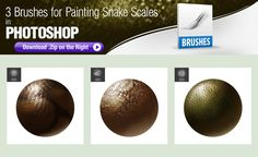 Photoshop Brushes for Painting Snake Scales by pixelstains.deviantart.com on @DeviantArt Free Photoshop, Photoshop Brushes, Snake Scales, Skin Brushing, Brush Sets, Elephant, Deviantart, Painting, Free Brushes