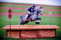 #equestrian #equine #horse http://globalhorsecents.com