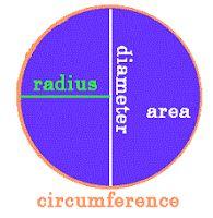 "halfwit lawyer thinks half the diameter of a circle is the ""radium"" -- #geometry #mathematics #perimeter"