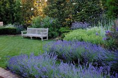 Loi's stunning gardens.  via  Tone on Tone: Update On Our Blue Garden