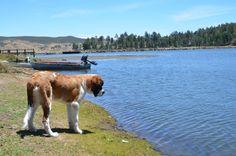 9. Lake Cuyamaca