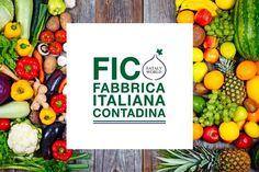 Apre a Bologna il parco a tema dedicato al cibo di qualità: dal campo alla tavola per offrire un'esperienza che vuol essere anche educativa e divulgativa con un occhio alla...