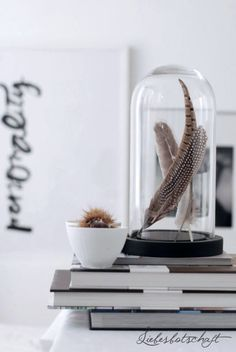 Creating atmosphere in the house with a glass bell jar Glass Bell Jar, The Bell Jar, Glass Domes, Bell Jars, Home Interior Accessories, Interior Styling, Interior Decorating, My Living Room, Home And Living