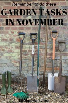 Check out this must-have list of barn tools every homesteader should own! Check out this must-have list of barn tools every homesteader should own! Herb Garden Design, Garden Tools, Garden Ideas, Organic Gardening, Gardening Tips, Vegetable Gardening, Homestead Gardens, Homestead Farm, Homestead Survival