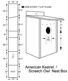 Bird House Plans 602426887641846766 - Screech Owl Nest Plan, Screech Owl Bird House Plans – Pillow Source by Homemade Bird Houses, Homemade Bird Feeders, Bird Houses Diy, Owl Nest Box, Owl Box, Bird House Plans Free, Bird House Feeder, Screech Owl, Bird Boxes