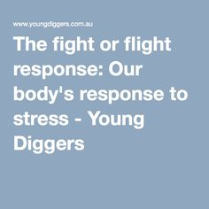 The fight or flight response: Our body's response to stress - Young Diggers