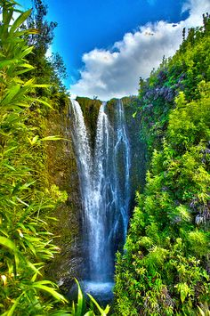 Maui has many secrets, i have lived here 25 years and never knew this waterfall existed until i hiked through a bamboo forest and slipped 15 ft in the mud with my camera in hand..  I looked up and i found this waterfall.