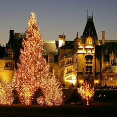 Christmas at Biltmore Estate i want to explore this place on my own one day, maybe next time i wander off from the tour : )