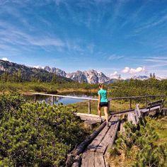 #dachsteinkönig #löckermoos #wandern #hiking #natur #nature #mountains #berge #österreich #austria