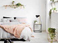 6 planter der giver dig bedre søvn -