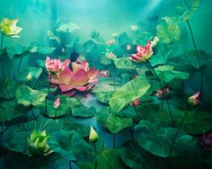 """""""Jee Young Lee transforms her studio space into incredible dreamscapes that feel as if they're made digitally, but are actually made from paper and everyday materials."""""""